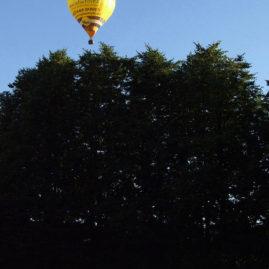 Balloon above Park