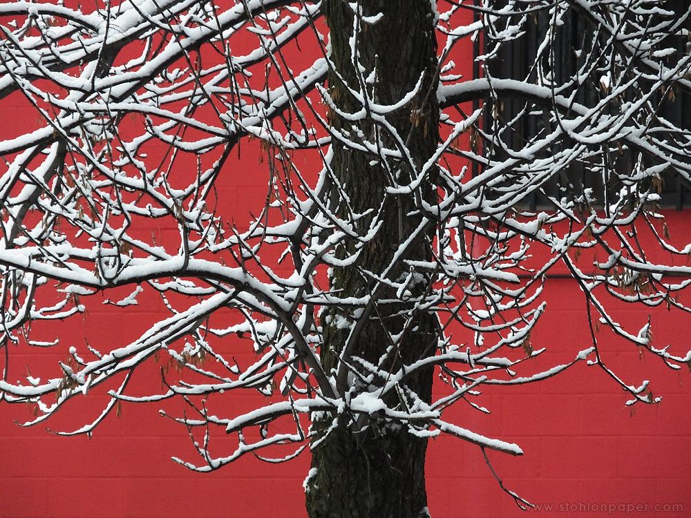 suxtrolls branch oh - photo #9